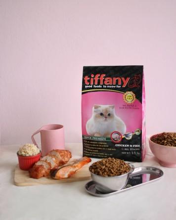 Tiffany Cat